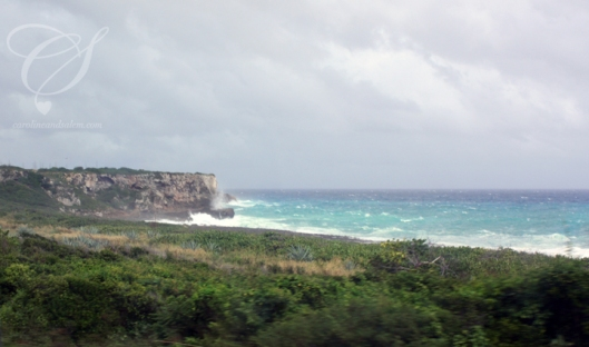 The coast along the way to Habana. La côte le long de notre trajet.