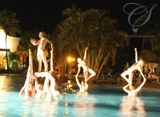 Aquatic show. Just... WOW!
