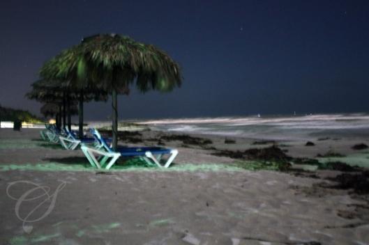 Beach at night, again, no tripod, aperture open for a little while. La plage le soir, toujours sans trépied et avec l'objectif ouvert pendant quelques secondes.