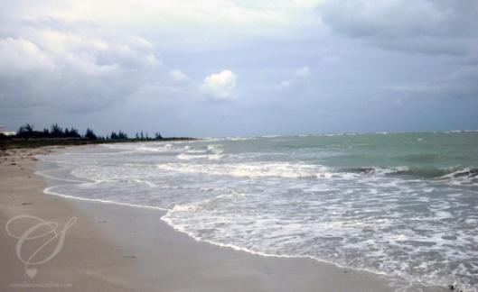 The beach. La plage.