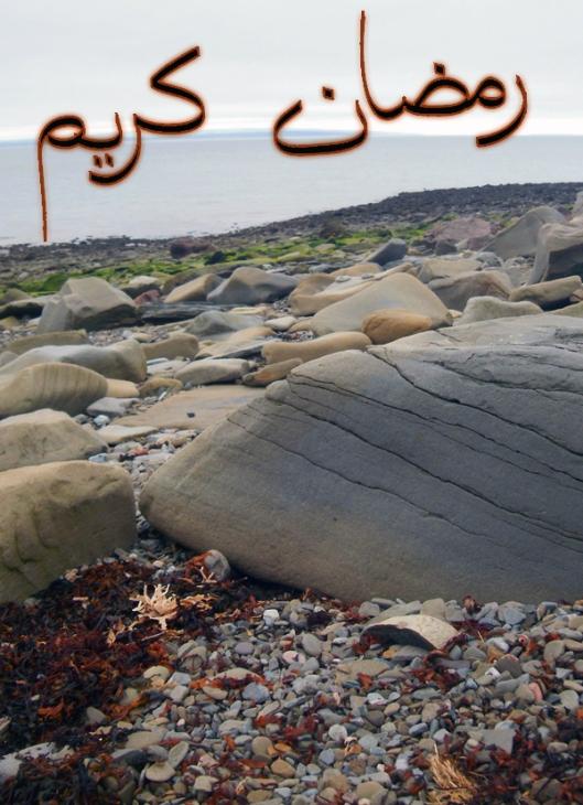 Ramadan Kareem (happy Ramadan) to everyone! Je souhaite un Ramadan Kareem (joyeux Ramadan) à tous!